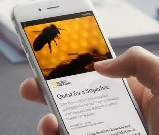 instant_articles